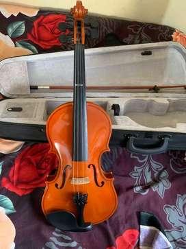 Violin in new condition