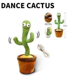 Dance Kaktus lucu