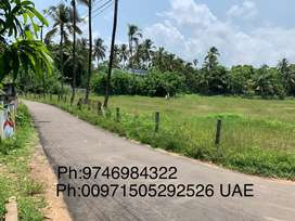 Area 173.46 cent empty land,225000 per cent owner Direct