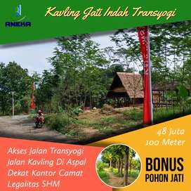 Dijual Tanah Kavling Jati Emas Bonus 10 Pohon Jati