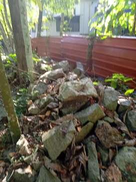 Rocks parakal