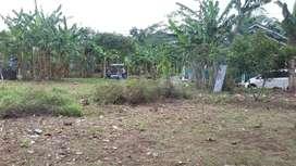 Disewakan Tanah Luas di Sentra Batik Sokaraja