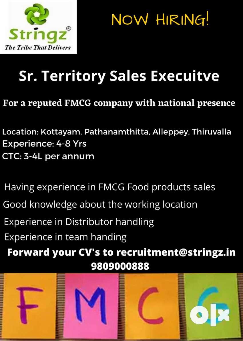 Sr.Territory Sales Executive 0