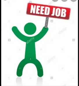 Assistant ki job need hy.