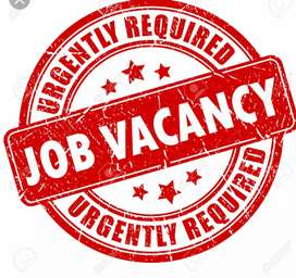 Its Business oriented Job...You can earn most of the money here.