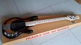 Gitar bass musicman sting ray sundburs nack full maple