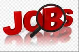 Electronic Company hiring multi talented candidate hiring fresher and