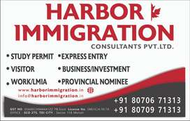 Marketing Manager for  Immigration visa salary Plus Incentive