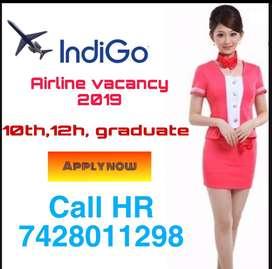 Job in airline 2019 for 10 th 12th graduate in Indigo