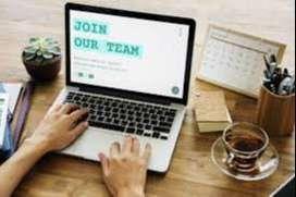 senior/junior accountant job in limited companies
