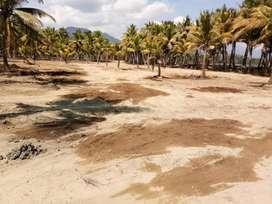 Tanah pinggir pantai  cocok untuk resort di lombok