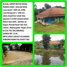 Dijual Cepat (Butuh Uang) Rumah Asri + Kolam Ikan Luas Tanah 1008m2