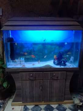 Extra Large Size Aquarium ( 4 Foot , 18 inches ) 8MM Glass (20 Fishes)