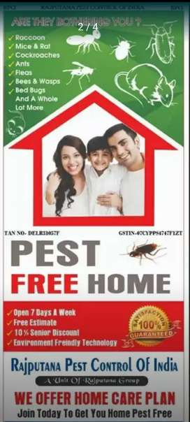 Pest Control Service- दीमक और काक्रोच से तुरंत छुटकारा
