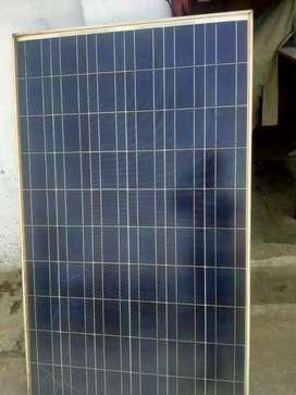 Vikram Solar panel 250 watt