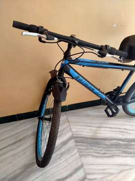 Adion bicycle with 6 gears