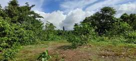 Settlement Plot for sale in netravalim (sanguem) goa