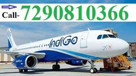 Airport/Airlines full time job ground staff,Cabin Crew, Lobby staff Ca