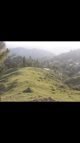 Property for sale at a good reasonable & negotiable price near Shimla