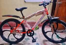 Brand New Avon Element Mag Wheel Double V Brake Full Alloy Bi-cycle