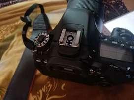 Canon 80d bill box complete