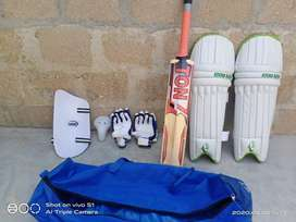 Hard Ball kit Bag Cricket Bat Pads Thigh Pad Gloves Guard and bag