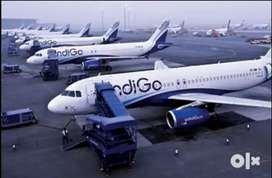 Urgently hiring for ground staff and security guard in bhopal Airport