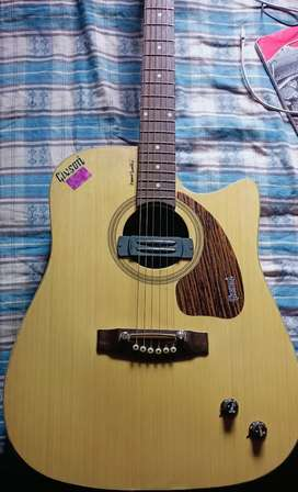 Givson guitar  .