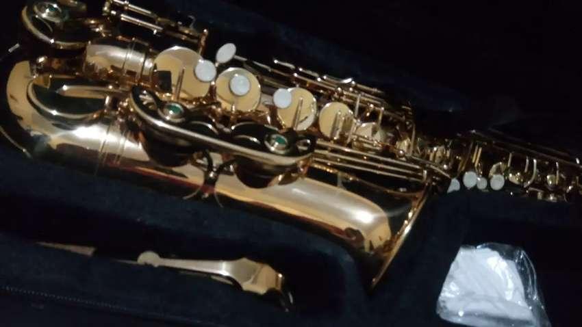 Saxophone alto paladin 0