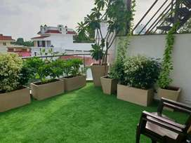 garden developing and maintenance
