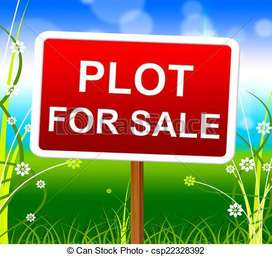 230 gaj plot in dorli roorkee road meerut