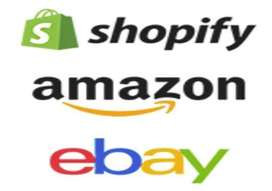 Amazon and Ebay Ecommerce and Digital Marketing Specialist