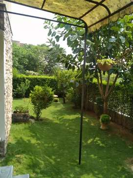 G-11/4 PHA C-type Ground Floor Flat For Rent With Lush Green Lawn