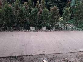 Jual butuh tanah cibinong gunungsindur  lokasi bagus