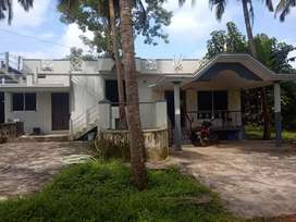 A Decent villa in 14 cents of land with a Well and 10 coconut trees