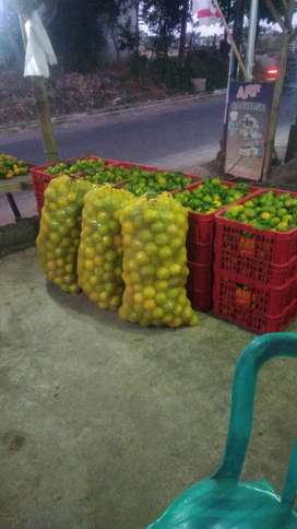 ARF Fruits, Grosir/Ecer Jeruk siem madu, Baby java