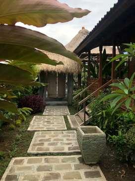 For Rent Villa Di LodTunduh Ubud ( Sewa Jangka Panjang 30 Thn )