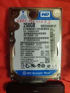 WD 250 GB Hard Drive