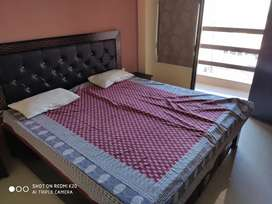 1BHK fully furnished room for rent with balcony