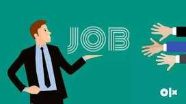 Urgent Requirement of Network (IT) Engineer
