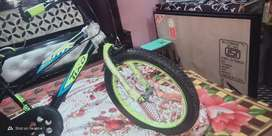 Rico bicycle