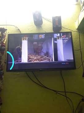 , TV repair for reasonable price.