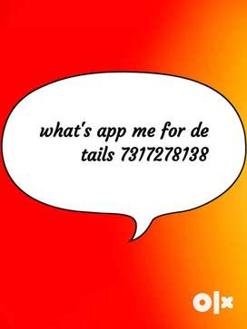 )New office lunched for part time job.cantact me time (09am-1pm)bbsr