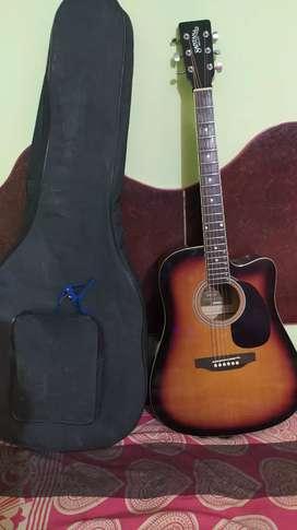 Acaustic Guitar