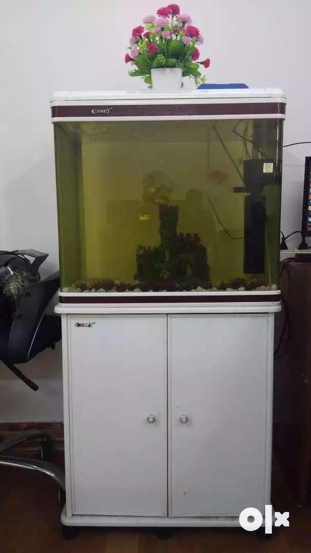 Modern Fish tank for sale 0