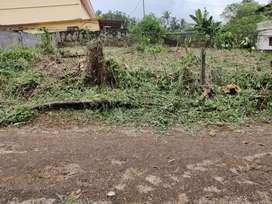 12 Cents landfor sale at Indira Nagar, Kunnamkulam,Thrissur, Kerala