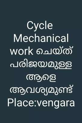 Cycle mechanic wanted