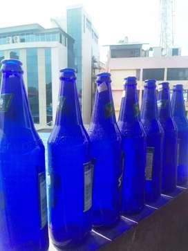Bottle for art sale only 150 rupees