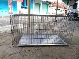 New Kandang Kucing, iguana, burung 1 meter