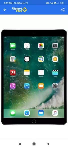 iPad pro 256gb wifi